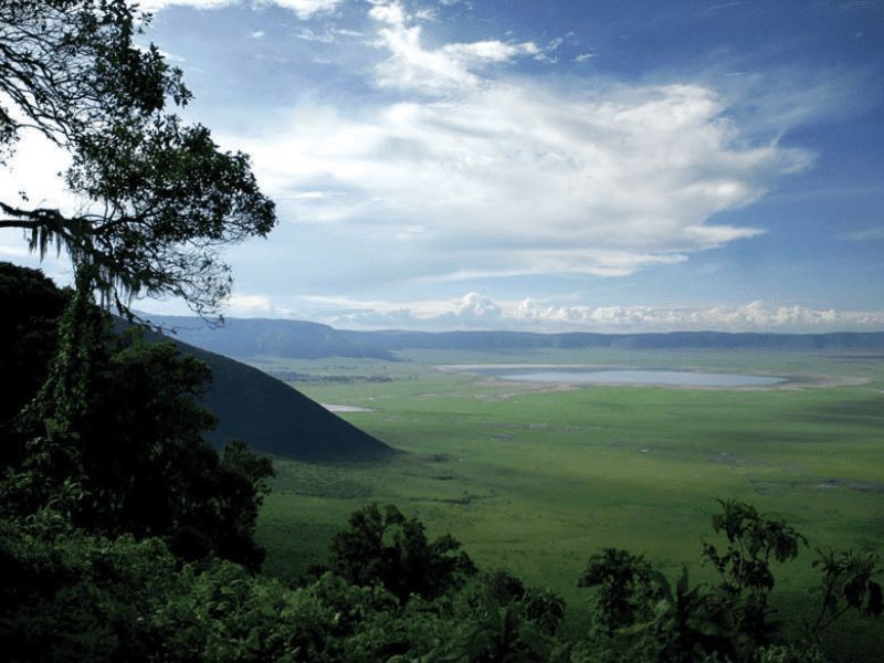 NGORONGORO DIRECT SAFARI